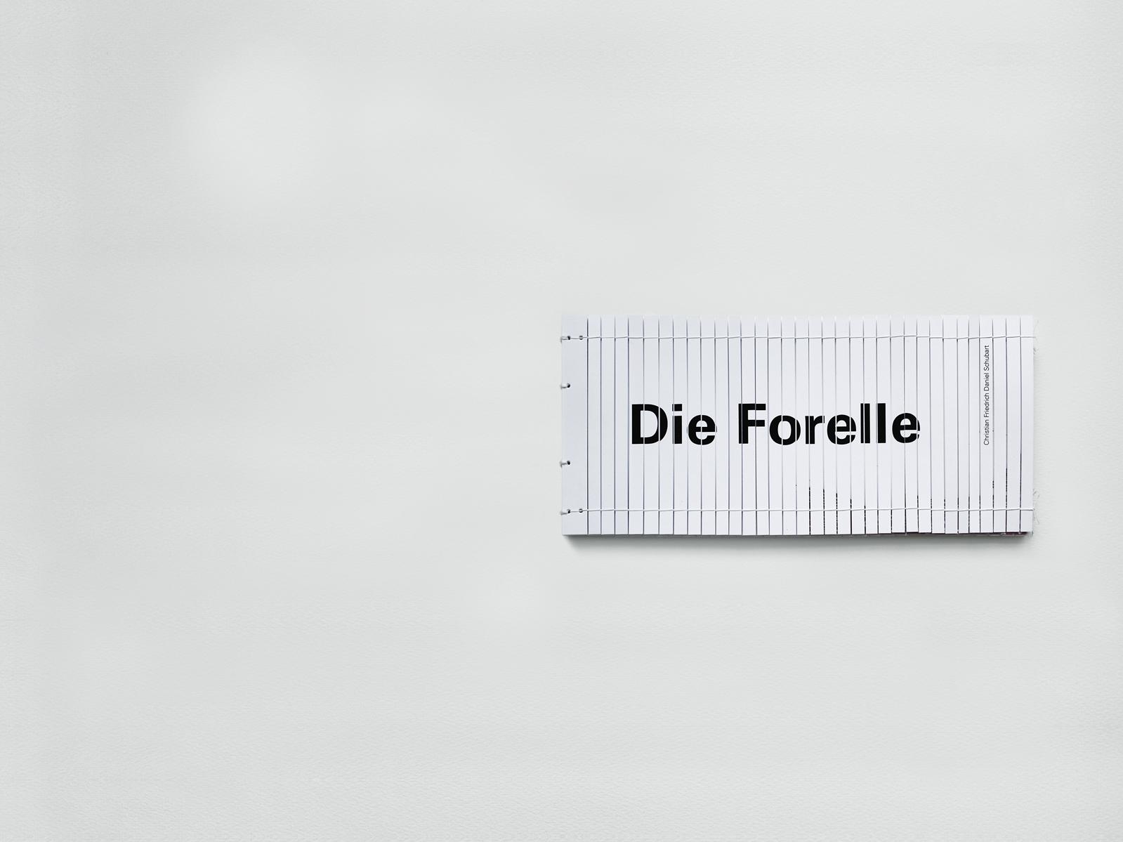 die_forelle_41